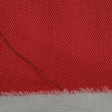 Double Color Cotton Twill Fabric